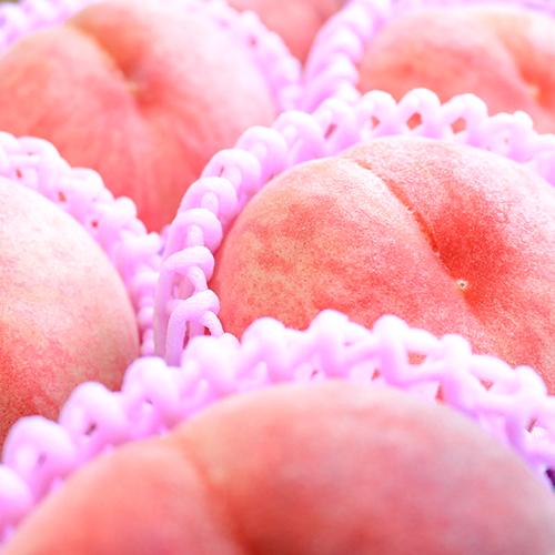 abe-peach3l_2
