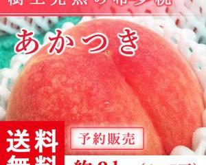 fukufukugenki_abe-momo-aka-l2kg