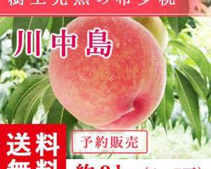 fukufukugenki_abe-momo-knj-l2kg