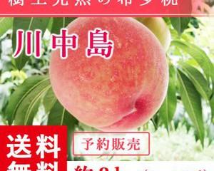 fukufukugenki_abe-momo-knj-l3kg